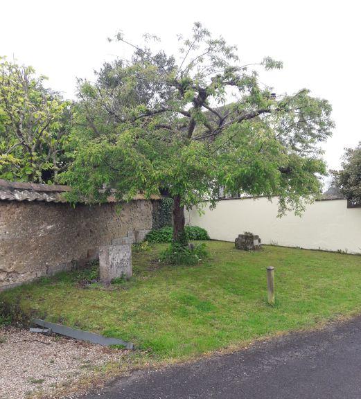 Millenium stone location
