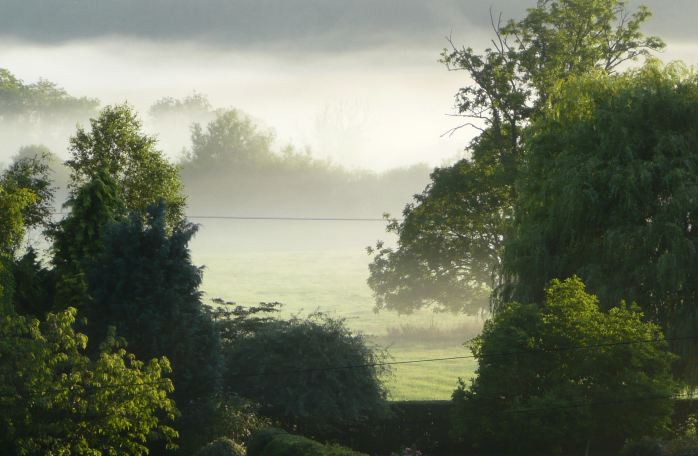 Dawn over the water meadows