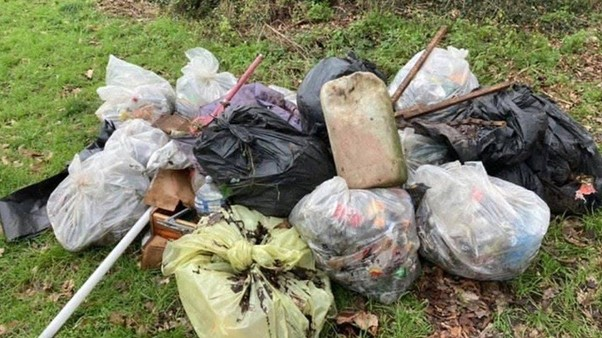 picture of litter